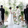 ウェディング/結婚式
